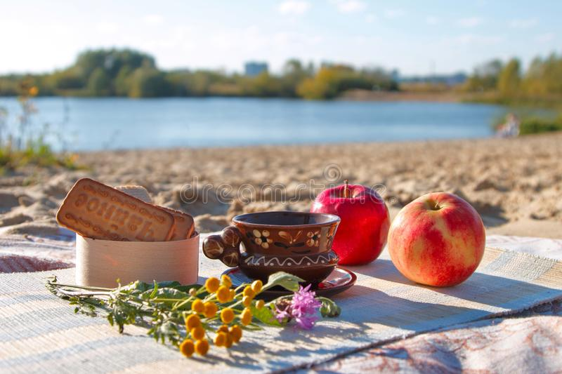 Sun. Sunlight. Output. Vacation. Rest. Clay Cup and saucer. Cup of coffee. Black coffee. Cookies and waffles. Flowers. Close up. S. Ide view. Red and pink apples stock images
