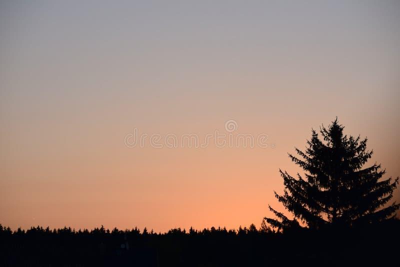 Sun sur l'air photo libre de droits