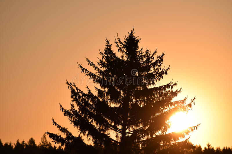 Sun sur l'air image libre de droits