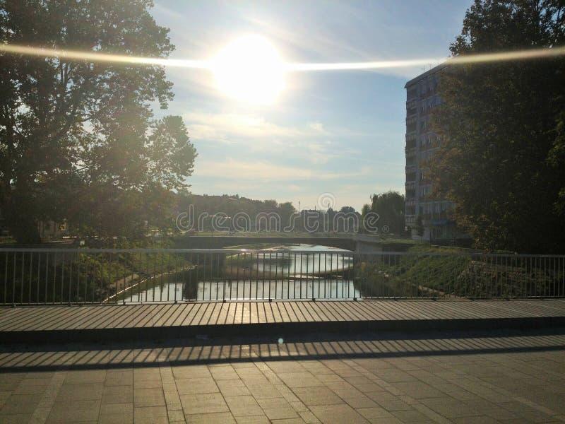 Sun-Umarmung lizenzfreies stockfoto
