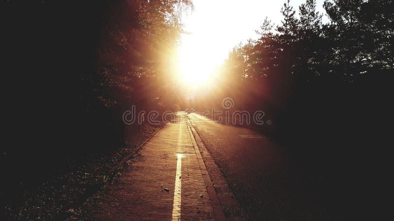 Sun unten im August stockfotografie
