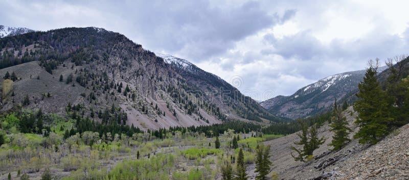 Sun Valley, каньон барсука во взглядах панорамы ландшафта национального леса гор Sawtooth от дороги заводи следа в Айдахо стоковое изображение