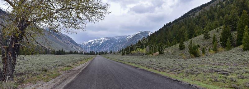 Sun Valley b?verskinnkanjon i f?r Forest Landscape f?r Sawtoothbergmedborgare sikter panorama fr?n slingaliten vikv?gen i Idaho royaltyfri bild
