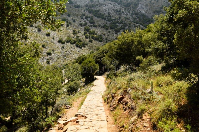 Sun valley of Greece. Lassithi Plateau on island of Crete, Greece. Road in the countryside. Sun valley of Greece. Lassithi Plateau on island of Crete, Greece stock image
