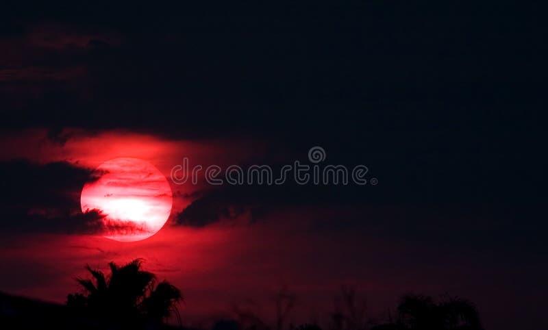 Sun vermelho na noite imagens de stock