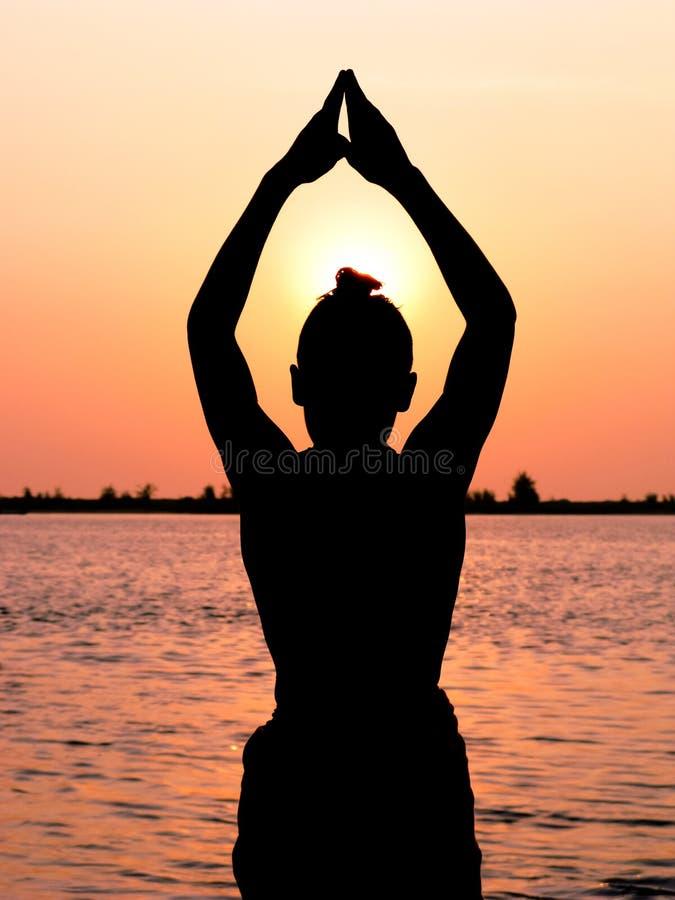 Sun Worship royalty free stock photo