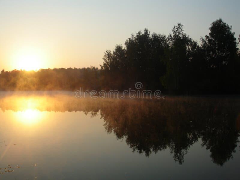 Sun y niebla fotos de archivo libres de regalías