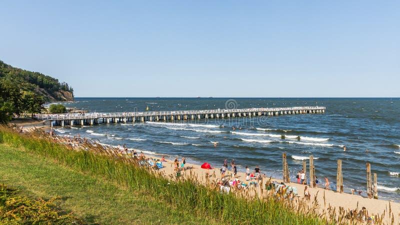 Sunbath людей на пляже стоковое фото