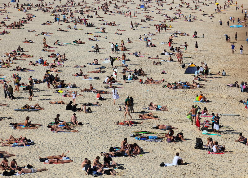 Sunbathers sulla spiaggia famosa di Bondi fotografie stock libere da diritti