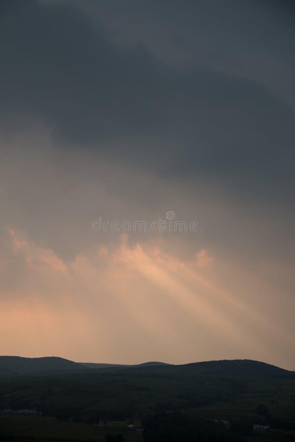 sunbeam stock afbeelding
