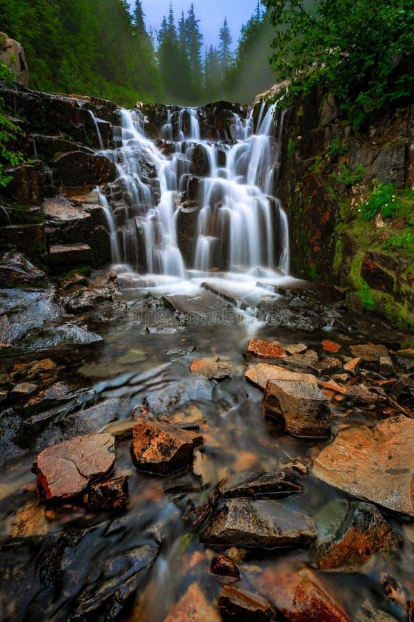 Free Sunbeam Creek Waterfall, Mt Rainier National Park, WA Stock Image - 161627841