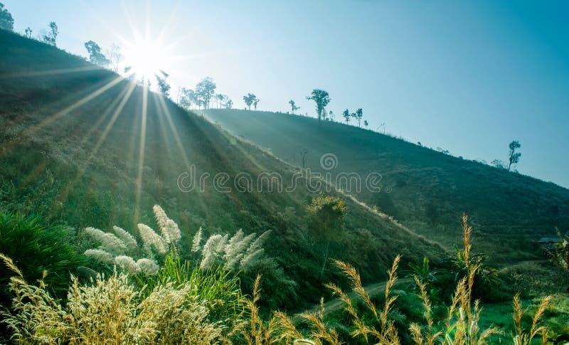 Sunbeam e foschia molle sopra il paesaggio della collina for Planimetrie del paese di collina