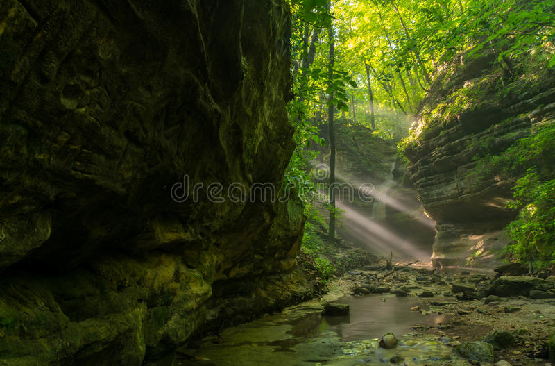 Sunbeams in the Dells. Sunbeams coming into the Upper Dells on a Summer's morning. Matthiessen State Park, Illinois stock photos