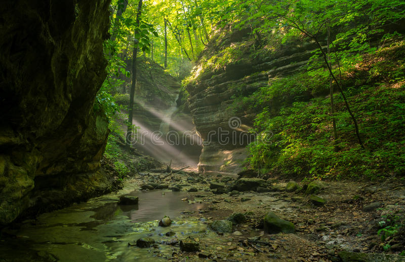 Sunbeams in the Dells. Sunbeams coming into the Upper Dells on a Summer's morning. Matthiessen State Park, Illinois royalty free stock images