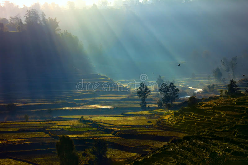 Sunbeams with rural scenery royalty free stock photography