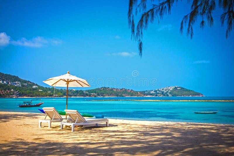 Sunbed och paraply på en härlig tropisk strand royaltyfri fotografi
