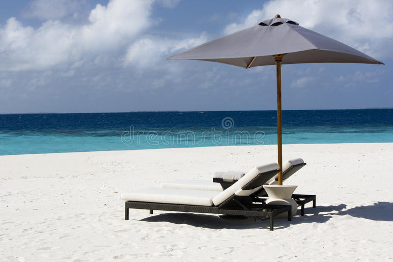 Download Sunbed on the sandy beach stock photo. Image of luxury - 11069436
