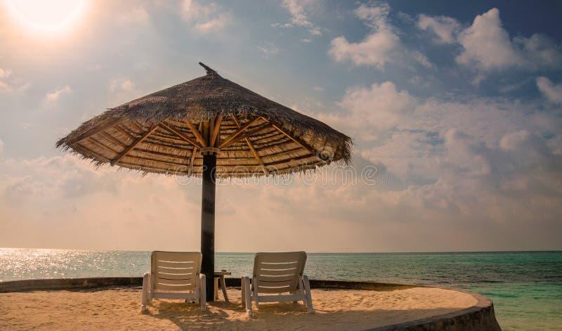Sunbeds和棕榈树伞在美好的日落的背景 免版税图库摄影