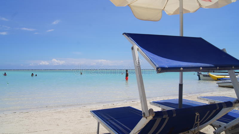 Sunbeds και ομπρέλες στην παραλία Boca Chica,  στοκ φωτογραφίες με δικαίωμα ελεύθερης χρήσης