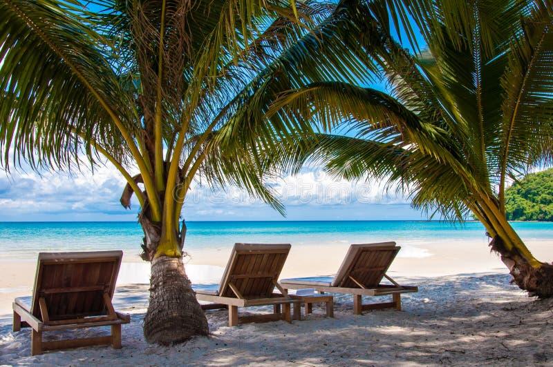 Sunbeds на экзотическом тропическом Palm Beach стоковые изображения