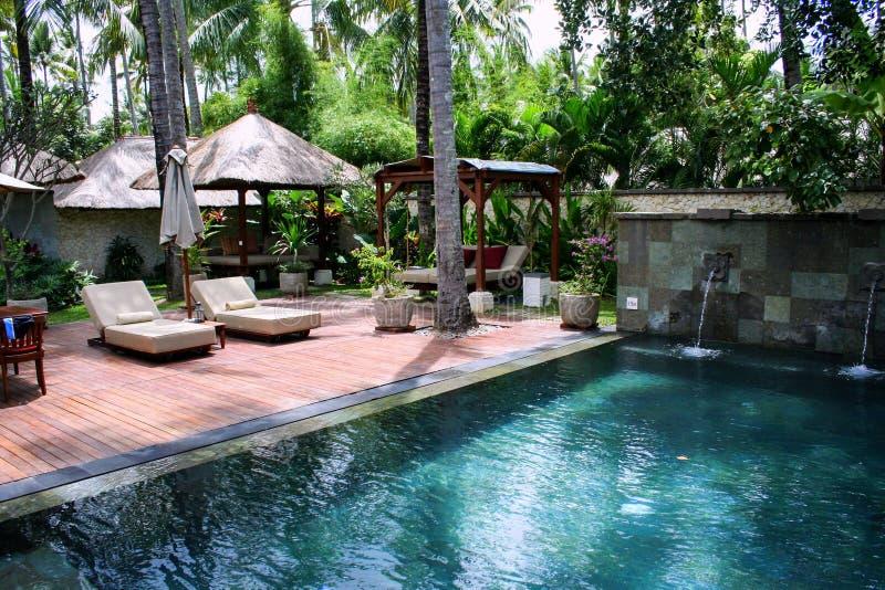 Sunbeds en paraplu's dichtbij het zwembad en palmen rond het Zeegezicht van Indonesië stock foto