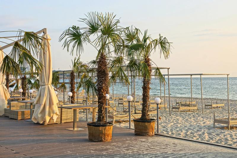 Sunbeds and furniture with umbrellas on the beach with palm trees in the sand against the sky and the sea. Brown sun beds and furniture with umbrellas on the royalty free stock photography