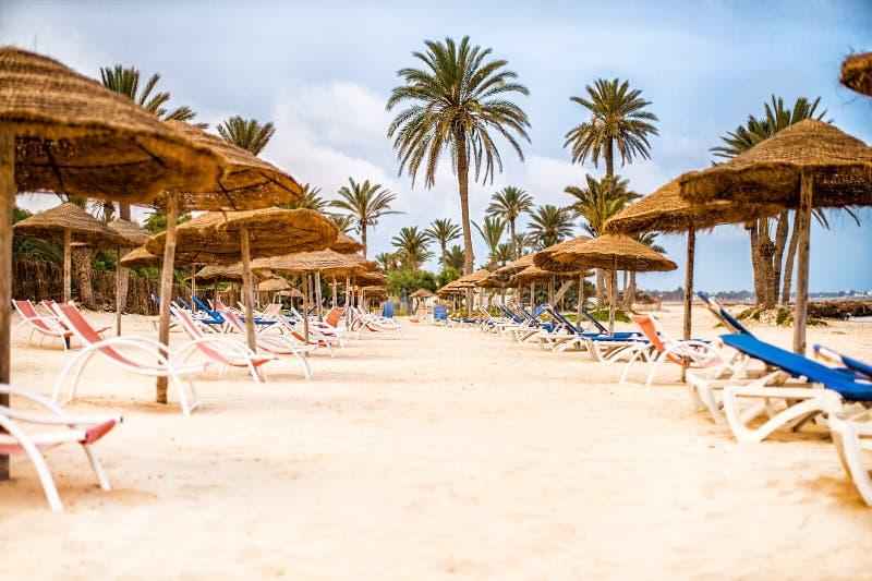 Sunbeds med slags solskydd på snövit sand på stranden royaltyfria foton