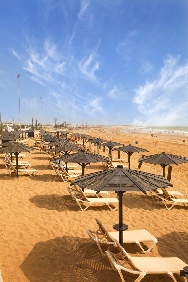 Sunbeds na praia arenosa imagem de stock royalty free
