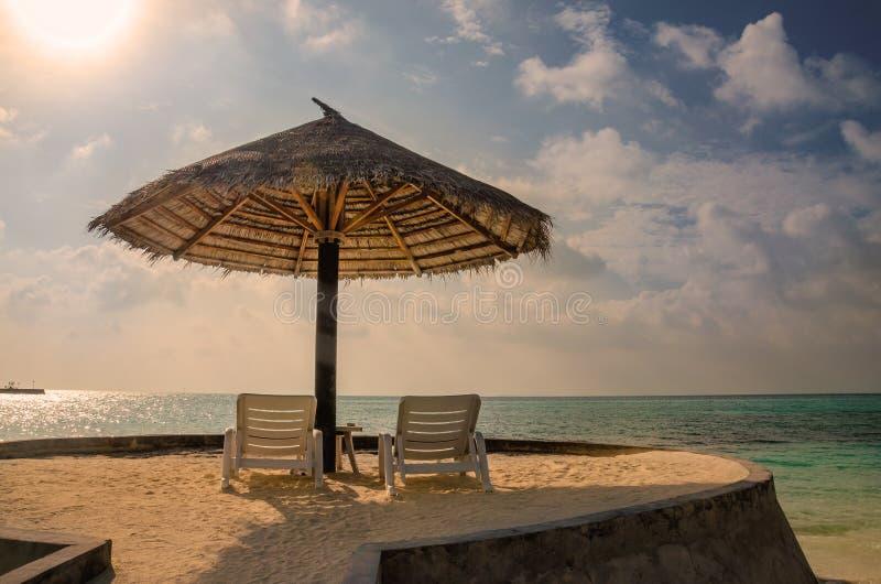 Sunbeds och palmträdparaplyer på en bakgrund av en härlig solnedgång över Indiska oceanen, Maldiverna fotografering för bildbyråer