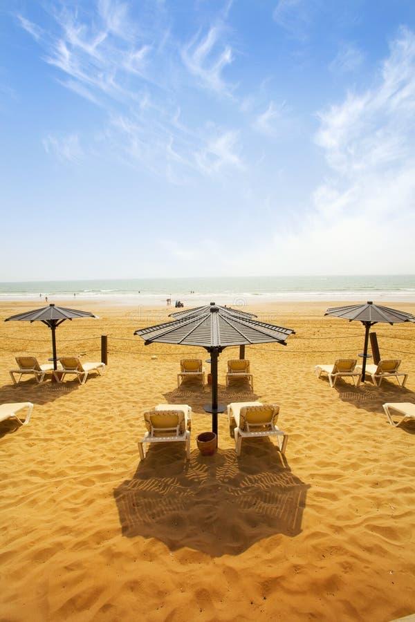 Sunbeds op zandig strand stock fotografie