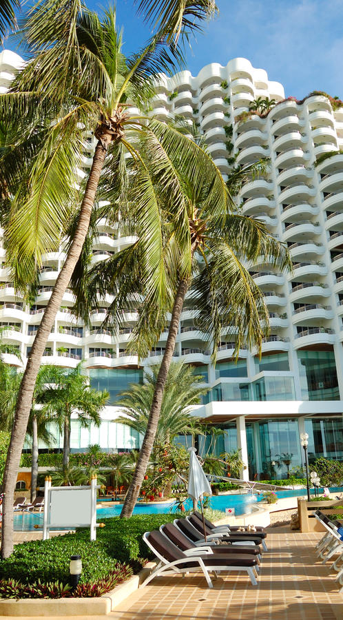 Sunbeds under palm trees at the luxury hotel royalty free stock photos