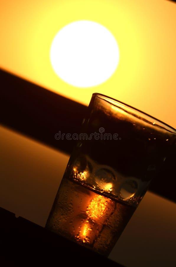 SunBeer fotografie stock