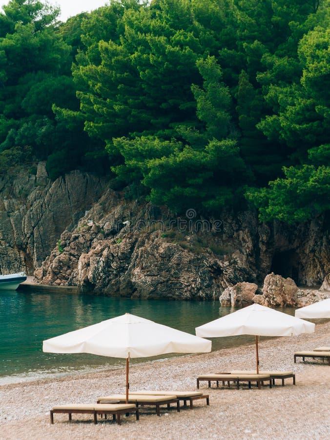 Sunbetten und -regenschirme auf dem Strand Montenegrinische Strände von lizenzfreie stockbilder