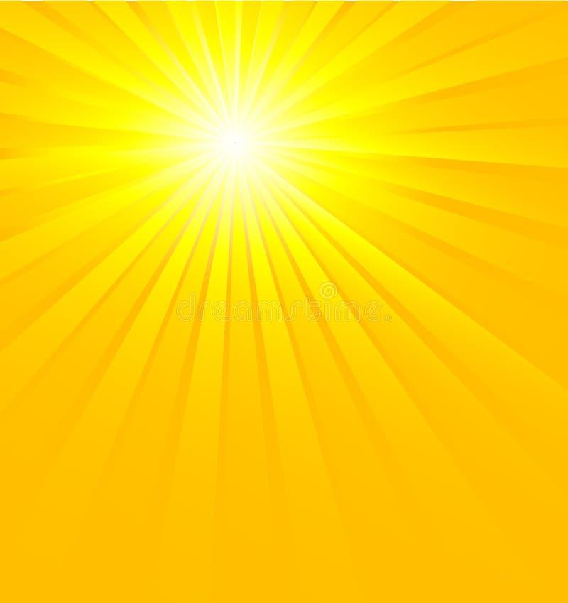 sunburst ilustracja wektor