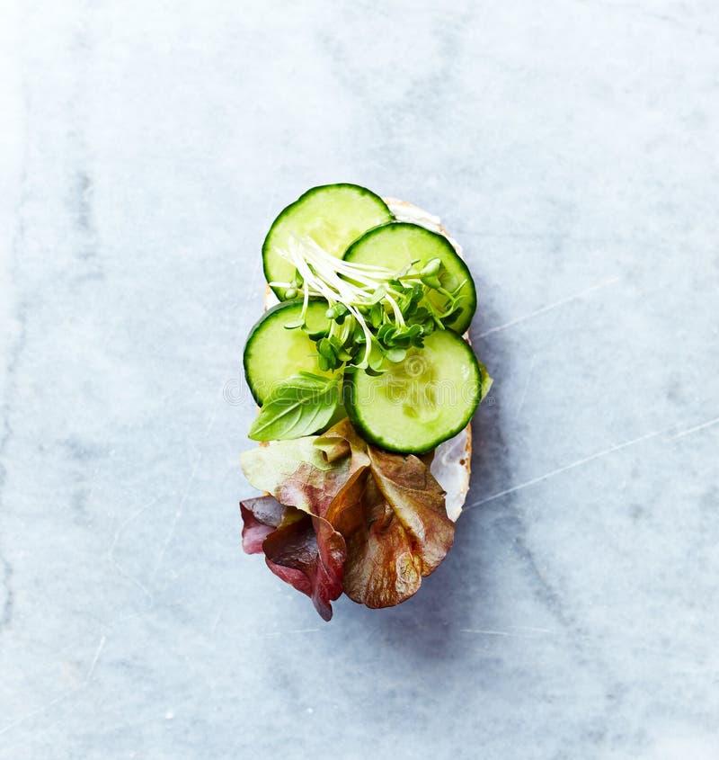 Sund öppen smörgås med mjuk ost, gurkan, röd grönsallat och örter Lekmanna- lägenhet sund begreppsmat Hemmet gjorde mat royaltyfria bilder