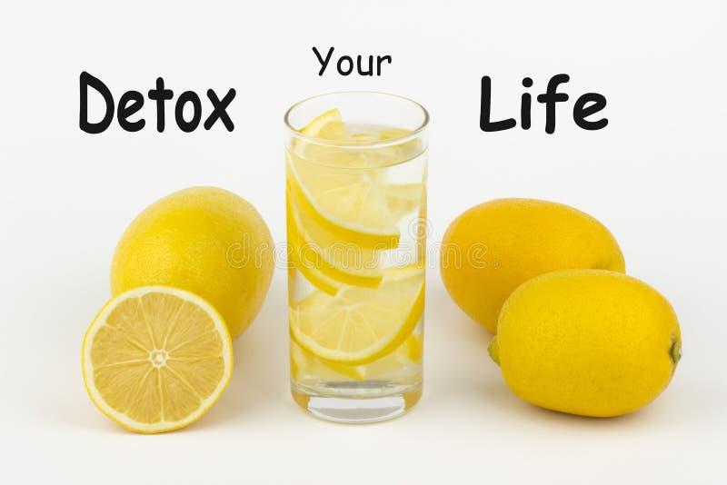 Sund Detox ditt liv royaltyfria bilder