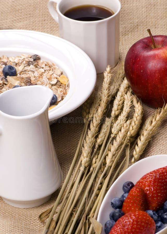 sund frukost 4 royaltyfri fotografi