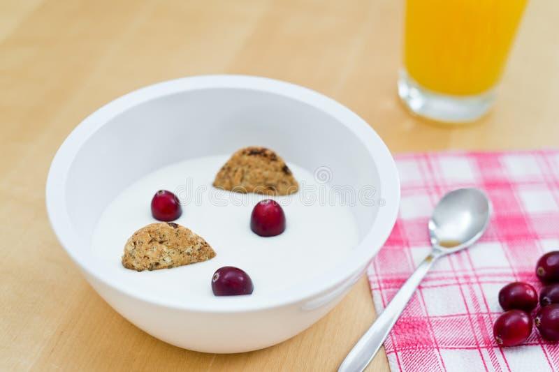 Sund frukost som innehåller naturlig yoghurt, sädes- kexar för wholemeal och nya cranberries arkivbilder