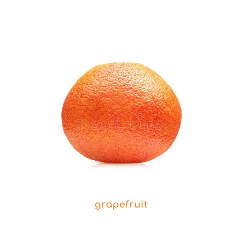 Sund frukt med den h?llande grapefrukten f?r den lyckliga kvinnan t?cker henne ?gon som isoleras p? naturgr?splanbakgrund, asiati royaltyfri fotografi