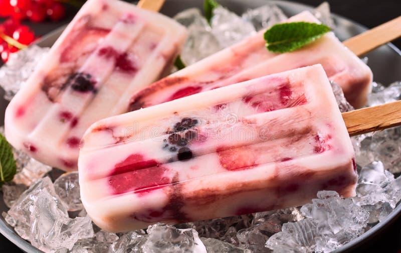 Sund fryst yoghurt- och bärisglass på is royaltyfria foton
