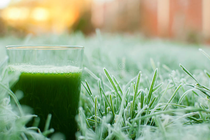 Sund grön detoxfruktsaft arkivbild