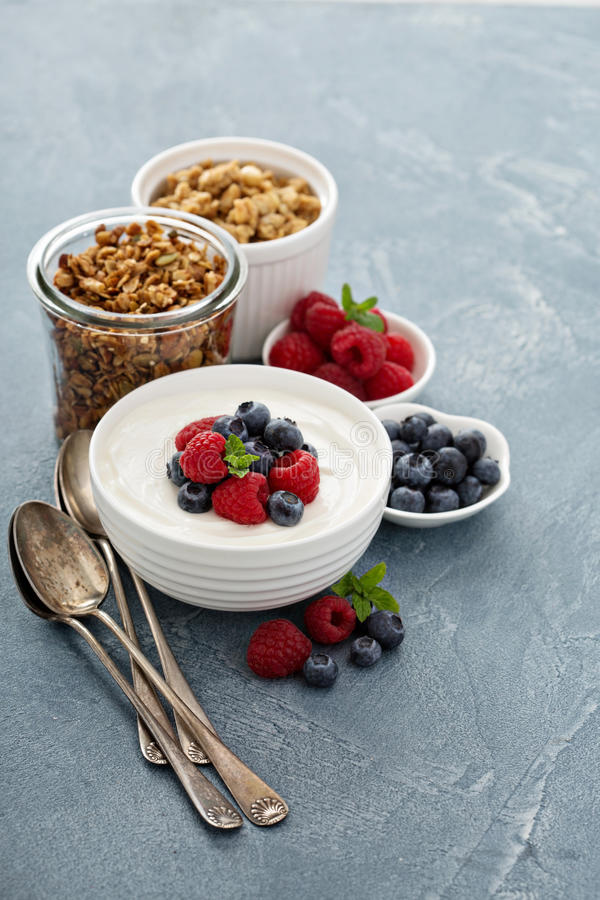 Sund grekisk yoghurtbunke med bäret royaltyfria bilder