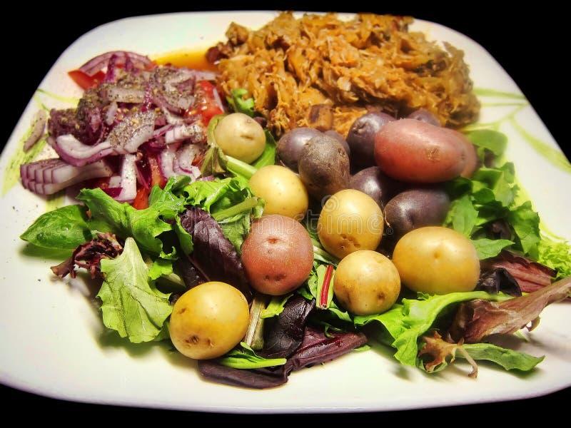 Sund hjälp för förlust för vikt för grönsaker för veggies för kött för målmatställelunch royaltyfria bilder