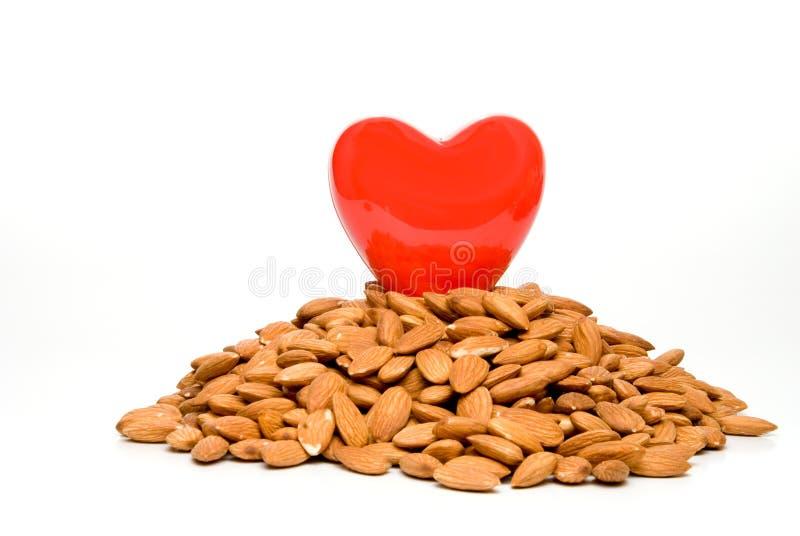 sund hjärta fotografering för bildbyråer