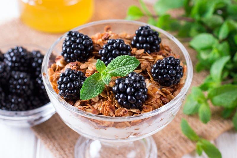 Sund i lager efterrätt med yoghurten, granola, björnbär i exponeringsglas på wood bakgrund arkivfoto