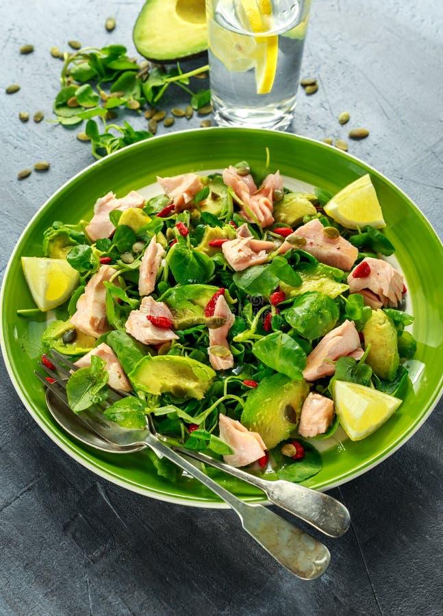 Sund lax-, avokadosallad med källkrasse och gojibär, pumpa kärnar ur blandningen på den gröna plattan arkivbilder