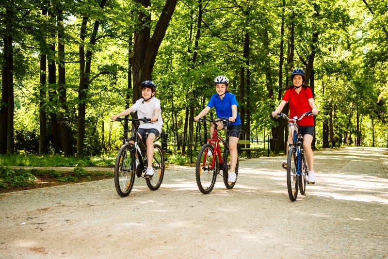 Sund livsstil - cykla för familj royaltyfria bilder