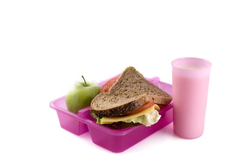 sund lunchbox fotografering för bildbyråer