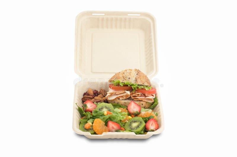 sund lunchbox togo för mat royaltyfri foto