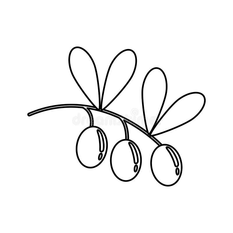 Sund mat för olivolja vektor illustrationer